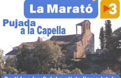 07-CARTELL LA MARATO-2013